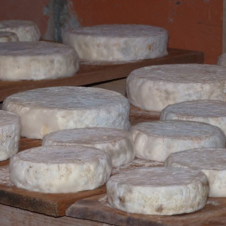 Celliers, sa fromagerie